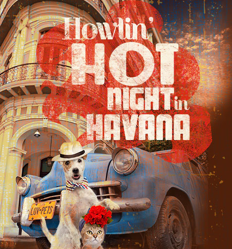 Howlin' Hot Night in Havana